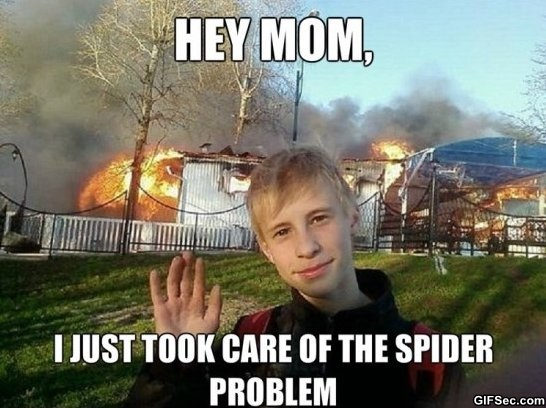 bizarre....  - Page 9 Funny-pictures-kill-the-spider-with-fire